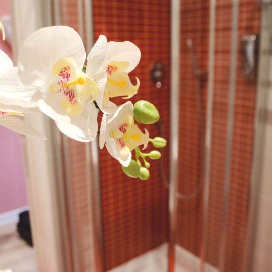 https://www.villaerasi.com/wp-content/uploads/2020/03/villa-erasi-bagno-pink-decorazione-min-540x540.jpg